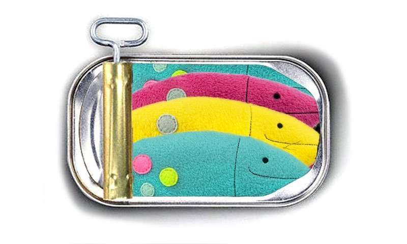 Handmade Fish Tuna Toy