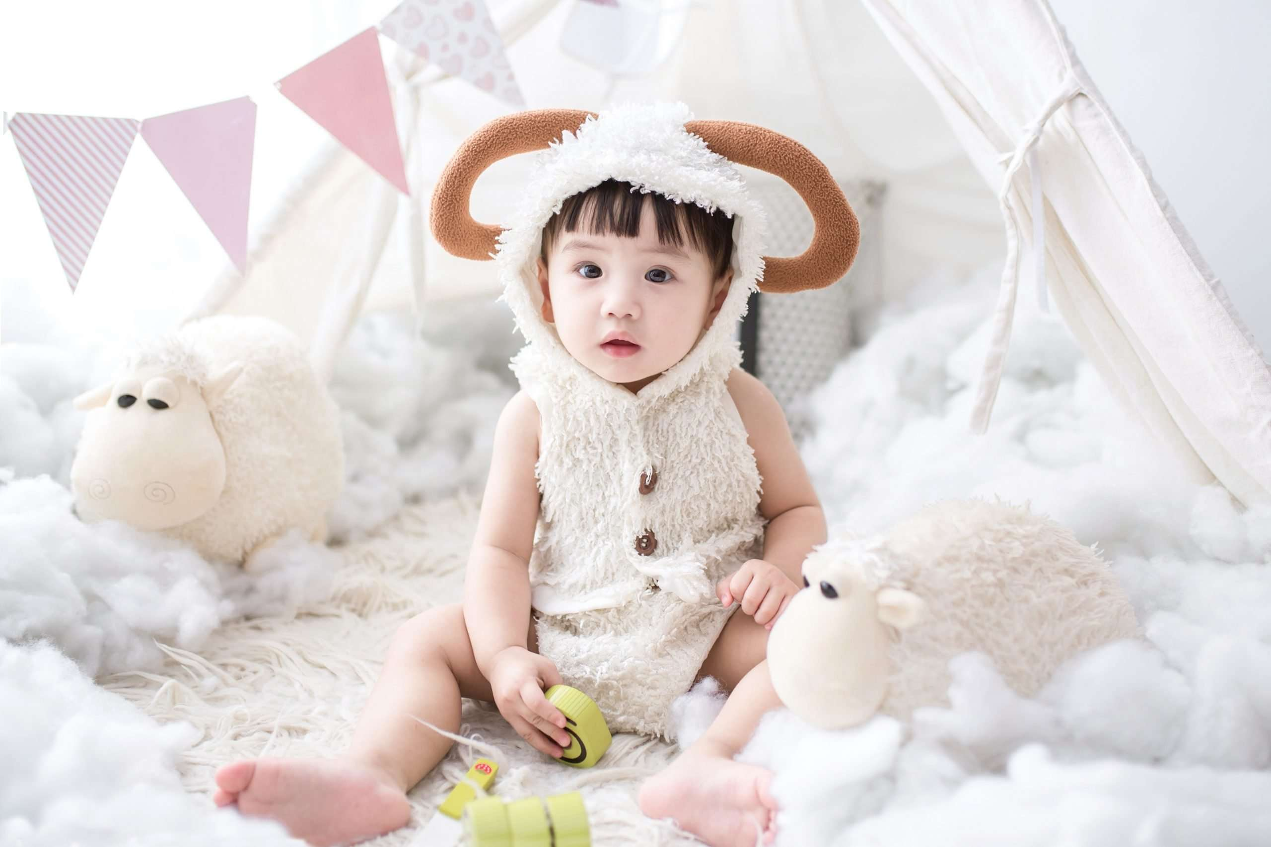 Choose Best Plush Toys for Baby